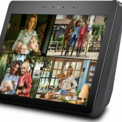 """Case: """"Bibi und Tina: Ferien auf dem Martinshof"""" Amazon Alexa Skill"""