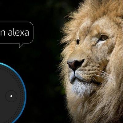It's all about voice: Alexa brüllt jetzt wie ein Löwe.